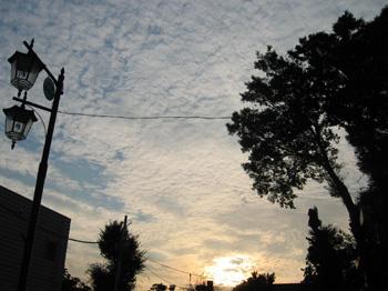 20050930_1.jpg
