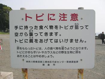 20060419_06.jpg