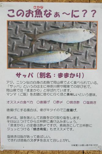 20060814_2.jpg