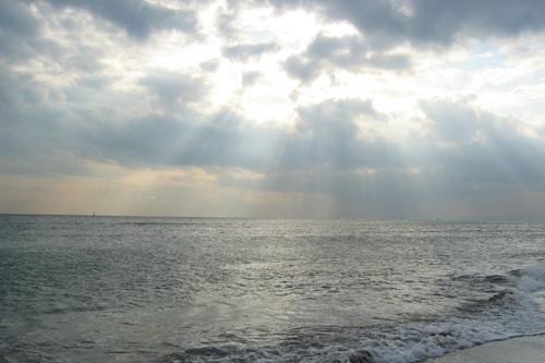 20061120_3.jpg