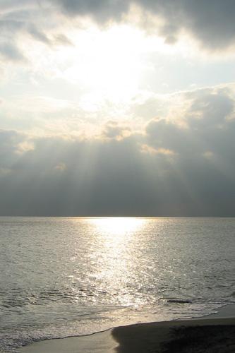 20061120_6.jpg