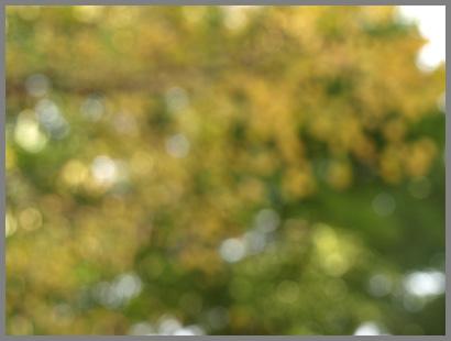 20071107_2th.jpg