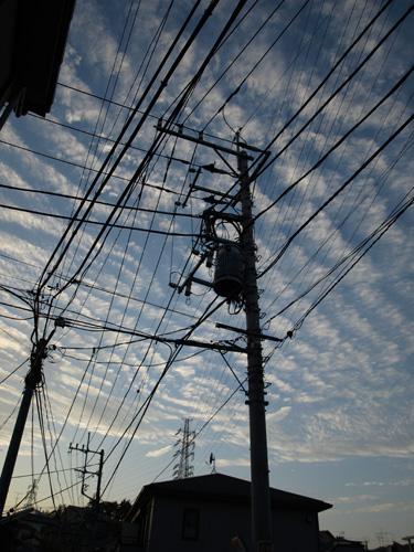 20071107_6.jpg