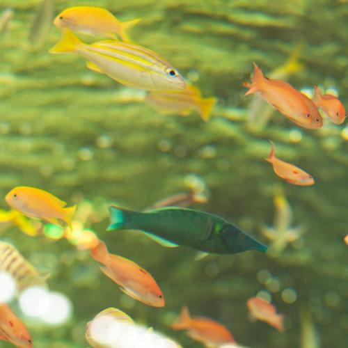 深いヴィリジアン色の魚