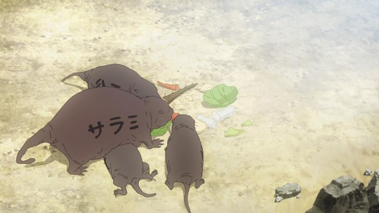 なぜバケネズミが生まれたのか